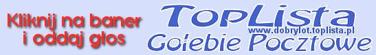 Toplista dobrylot - oddzaj głos na stronę Michała Trójczaka